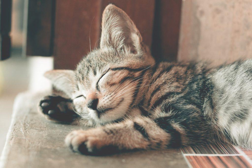 Goed kunnen slapen
